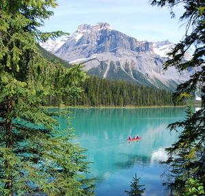 Banff canoes